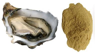 สารสกัดจากหอยนางรม